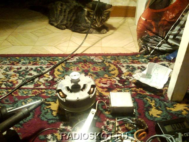 Котэ наблюдает за интересным электромоторчиком: